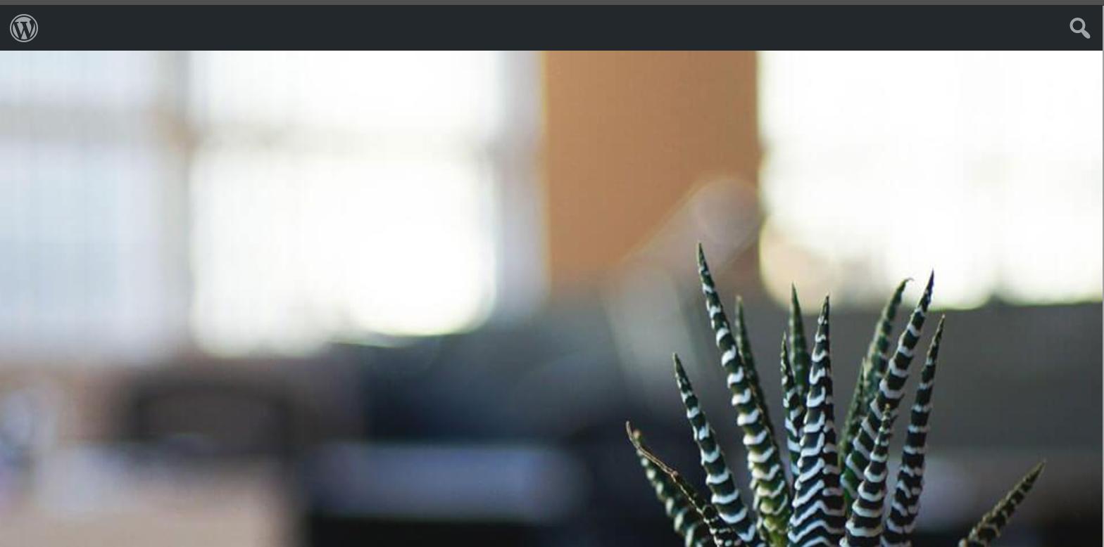 Default WordPress admin bar showing on front end