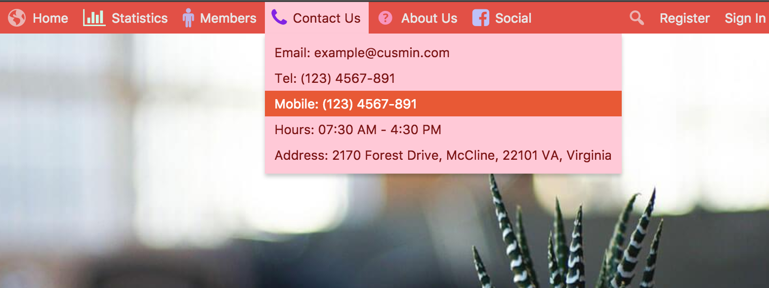 Default WordPress admin bar customized with Cusmin with custom colors and custom menu showing on front end
